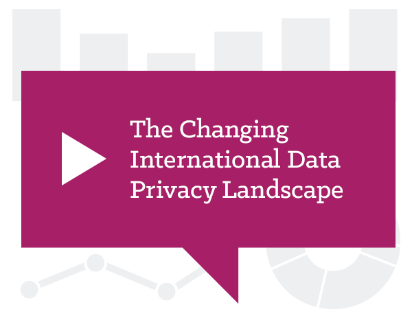 The Changing International Data Privacy Landscape – Litigation & Investigations in 2017 and Beyond